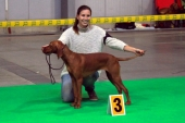 Coco Princess C9H13NO3, Exc.1, CAC, Res. CACIB